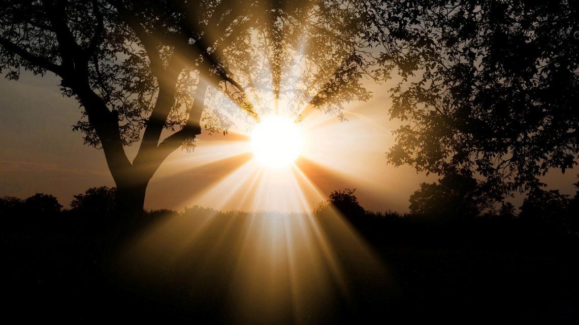 Par quel principe la luminothérapie est-elle efficace ?
